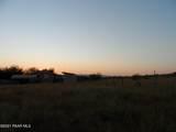 20872 Cactus Wren (Backs State Land) Drive - Photo 6