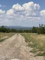 42173 Deer Camp Trail - Photo 151