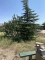 42173 Deer Camp Trail - Photo 37