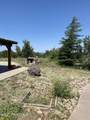 42173 Deer Camp Trail - Photo 40