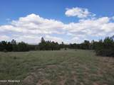 39351 Chase Rock Road - Photo 23