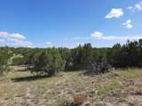 39351 Chase Rock Road - Photo 26