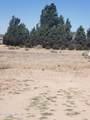 1700 El Paso Lane - Photo 7