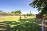 420 Pheasant Run Circle - Photo 21