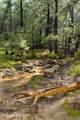 4429 Pine Mountain Road - Photo 25