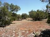 1024 Sierra Verde Ranch - Photo 12
