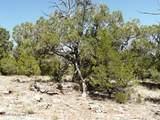 1024 Sierra Verde Ranch - Photo 16