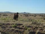 1430 Sierra Verde Ranch - Photo 4