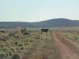 1430 Sierra Verde Ranch - Photo 5