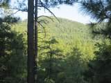31xx Crosscut Trail - Photo 6