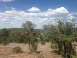 33422 Charro Road - Photo 4