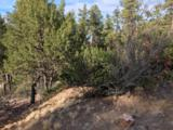 1572 Scotch Pine Drive - Photo 2