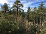 1572 Scotch Pine Drive - Photo 3