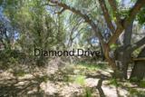 4911 Diamond Drive - Photo 12