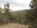 45325 Klinedog Trail - Photo 7