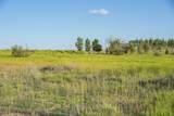 2590 Tree Farm Lane - Photo 2