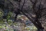 4880 Comanche Trail - Photo 75