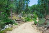 0000 Tanager Ridge Way - Photo 14