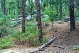 0000 Tanager Ridge Way - Photo 22