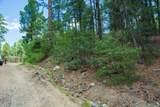 0000 Tanager Ridge Way - Photo 8