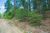 0000 Tanager Ridge Way - Photo 9