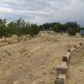 1096 El Rancho Road - Photo 8