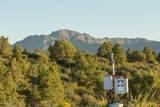 0 Fox Hollow Trail - Photo 13