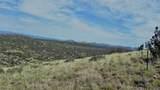 11925 Triple Crown Trail - Photo 3