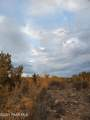 1020 Verde Ranch Road - Photo 4