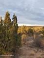 1020 Verde Ranch Road - Photo 7