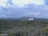 10499 Tough Country Trail - Photo 49