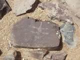 1563 Donamire Circle - Photo 42