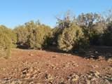 0 Gallina Road - Photo 1