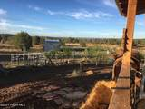 1048 Cienega Drive - Photo 46