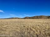 10147 Free Spirit Road - Photo 4