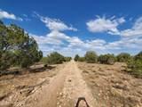 000 Humming Bird Lane - Photo 16