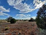 000 Humming Bird Lane - Photo 2
