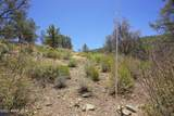 3208 Rainbow Ridge Drive - Photo 9