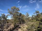 486 Ridge Runner - Photo 4