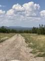 42173 Deer Camp Trail - Photo 209