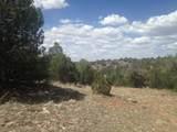 33422 Charro Road - Photo 7