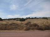 0 Longbranch Trail - Photo 9