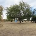 1096 El Rancho Road - Photo 3