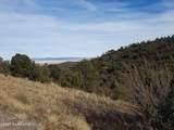 3168 Rainbow Ridge Drive - Photo 12