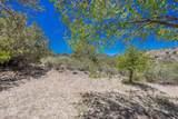 1965 Buena Vista Trail - Photo 42