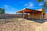 405 Antelope Drive - Photo 34
