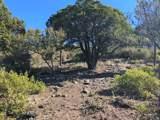 607 Autumn Oak Way - Photo 3