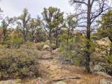 0 Cougar Canyon (Split) Road - Photo 1