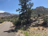 0 Cougar Canyon (Split) Road - Photo 3