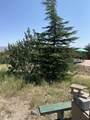 42173 Deer Camp Trail - Photo 14